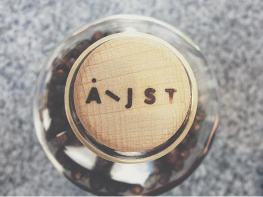 Aeijst (gesprochen Ej-st) ist ein steirischer Gin.